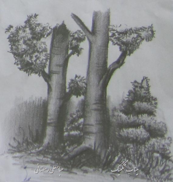 طراحی درخت ساده میناب تکنیک - نقاشی